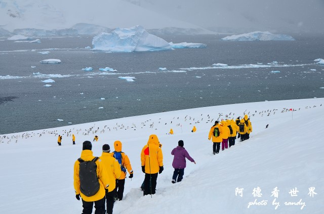 南極5D7 178.JPG