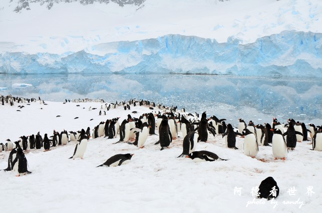 南極5D7 329.JPG