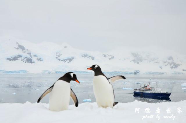 南極5D7 416.JPG
