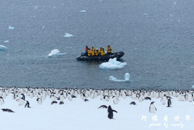 南極5FZ (157).JPG