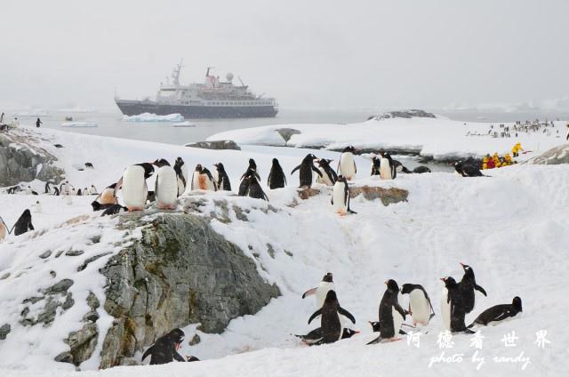 南極6D7 022.JPG