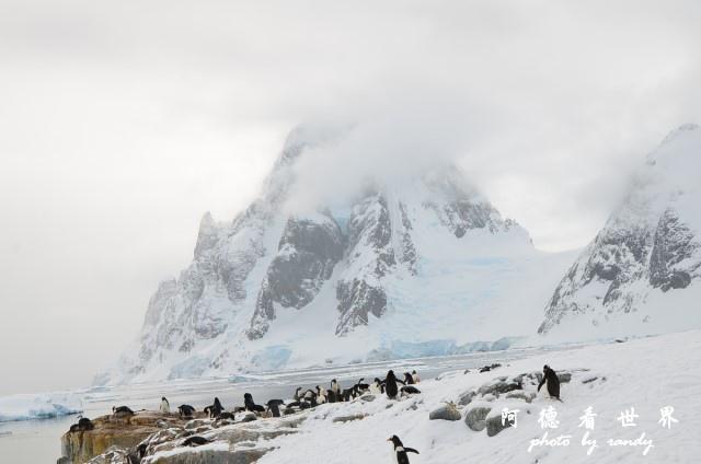 南極6D7 054.JPG