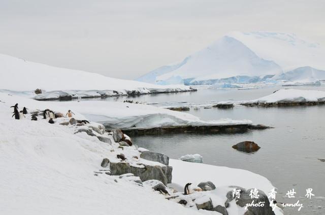 南極6D7 056.JPG