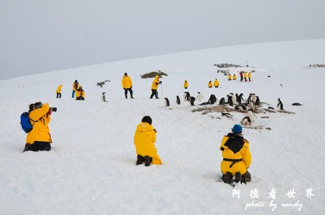 南極6D7 083.JPG