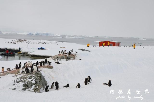 南極6D7 102.JPG