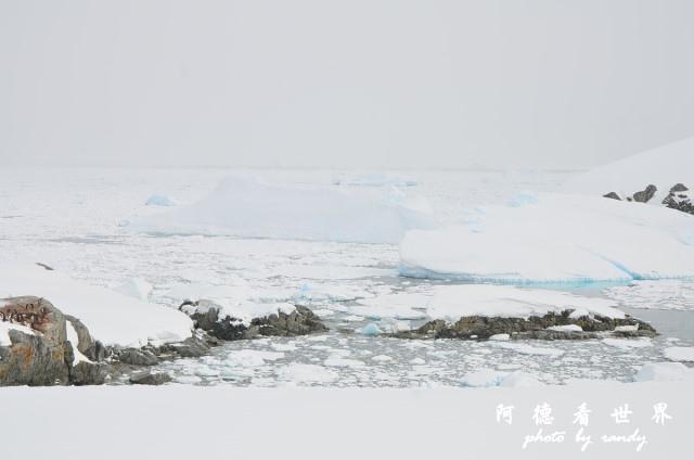 南極6D7 121.JPG