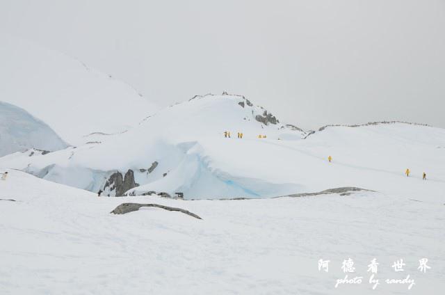 南極6D7 127.JPG