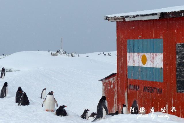 南極6FZ (11).JPG