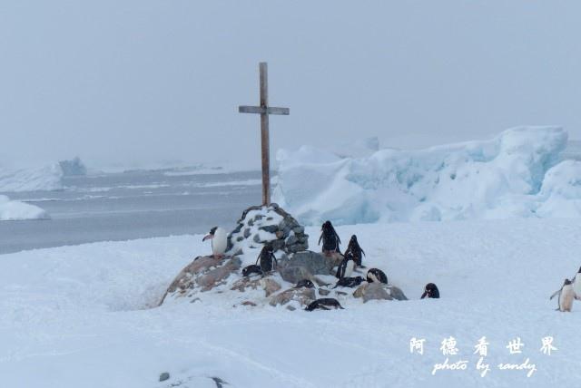 南極6FZ (147).JPG