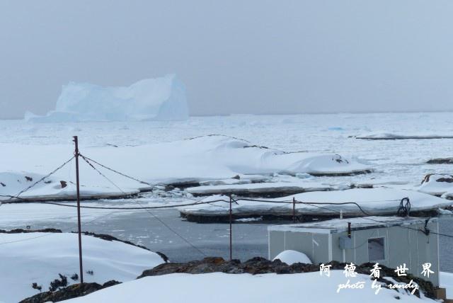 南極6FZ (232).JPG