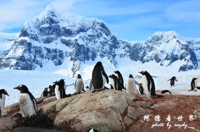 南極7D7 029.JPG