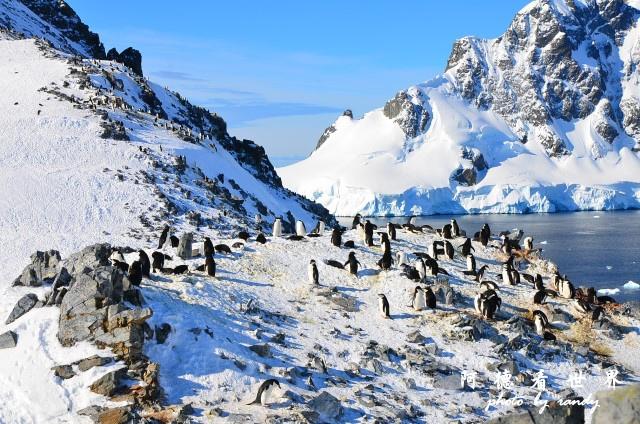 南極7D7 254.JPG