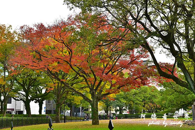 廣島平和公園D810 021.JPG