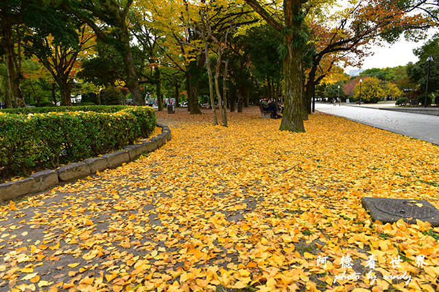廣島平和公園D810 058.JPG