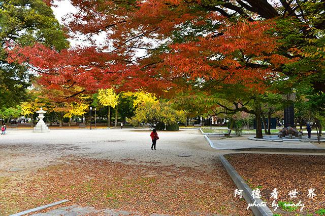 廣島平和公園D810 061.JPG