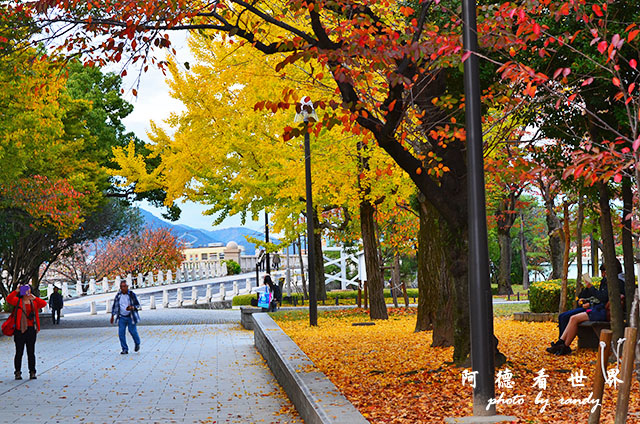 廣島平和公園D7000 001.JPG