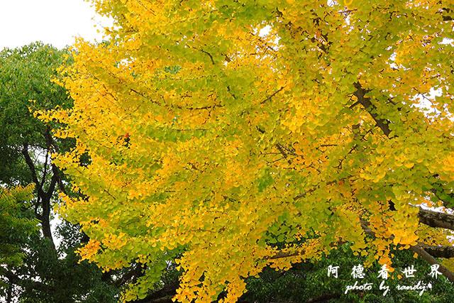 廣島平和公園P7700 065.JPG
