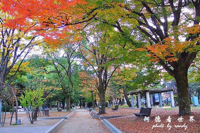 廣島平和公園P7700 088.JPG