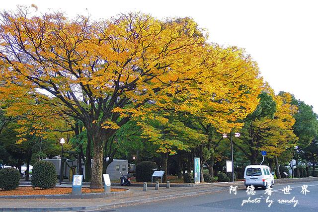 廣島平和公園P7700 092.JPG