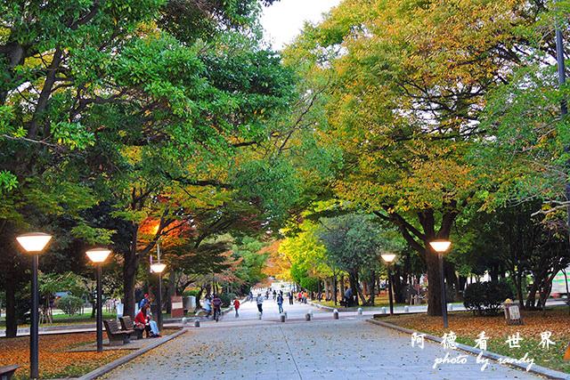 廣島平和公園P7700 099.JPG