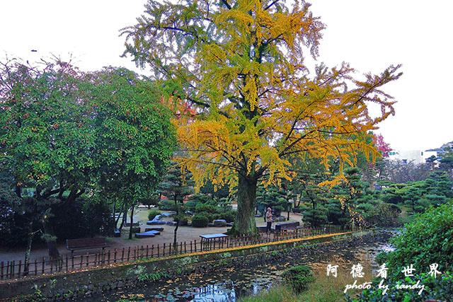 松山-大洲P7700 032.JPG