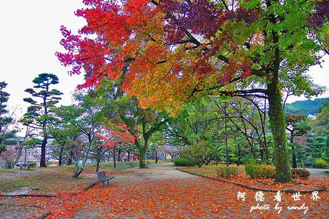 松山-大洲P7700 039.JPG