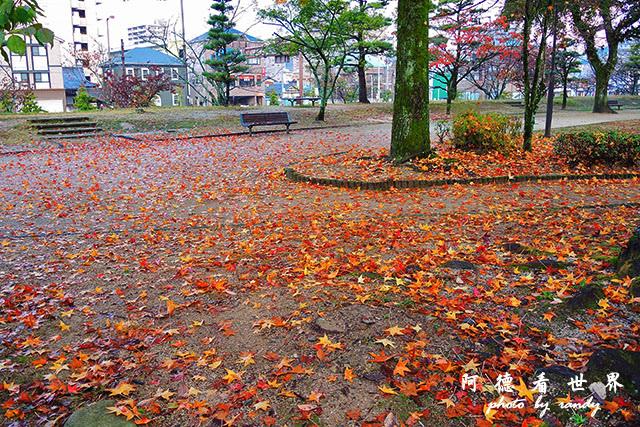松山-大洲P7700 038.JPG