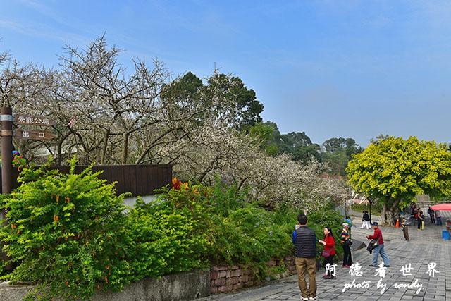 梅山公園D810 021.JPG