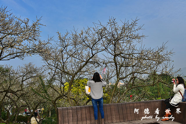 梅山公園D810 026.JPG