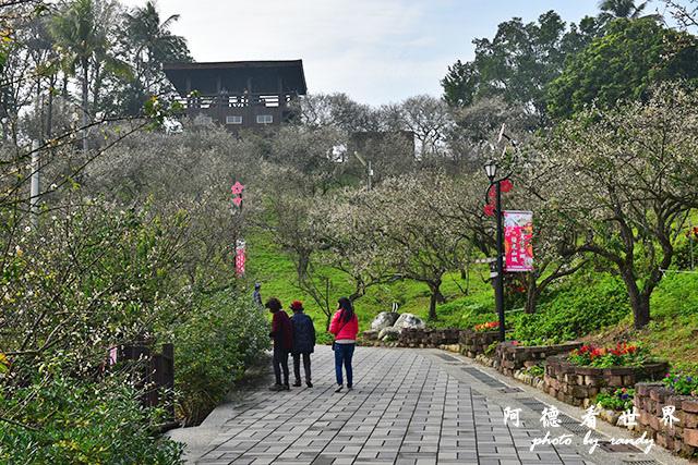 梅山公園D810 042.JPG