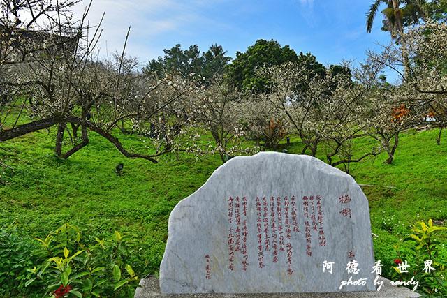 梅山公園D810 048.JPG