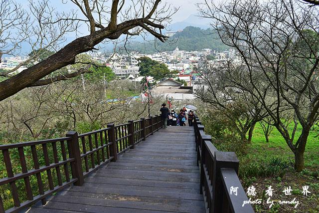 梅山公園D810 061.JPG