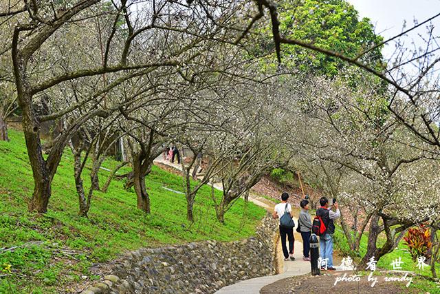 梅山公園D810 084.JPG