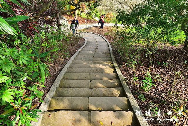 梅山公園D810 117.JPG