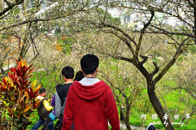 梅山公園D810 122.JPG