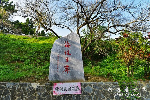梅山公園D810 193.JPG