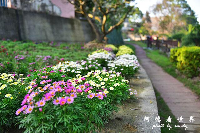 梅山公園D810 213.JPG