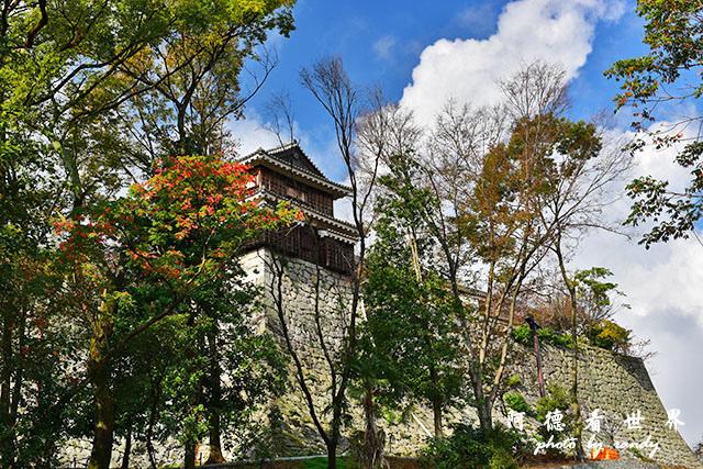松山-大洲D810 028.JPG