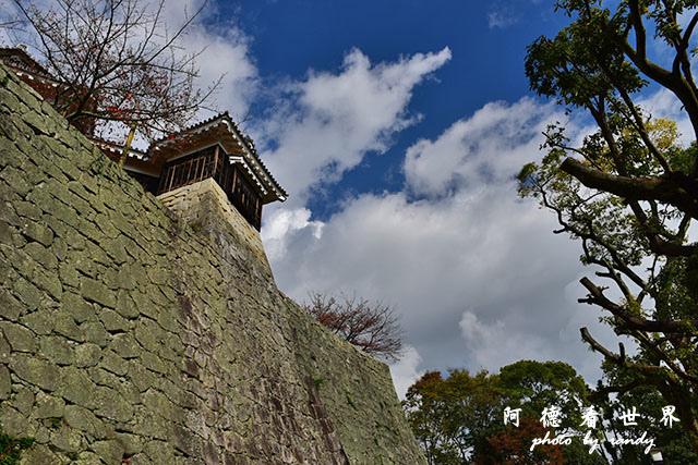 松山-大洲D810 033.JPG