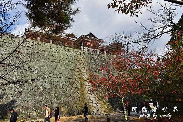 松山-大洲D810 034.JPG