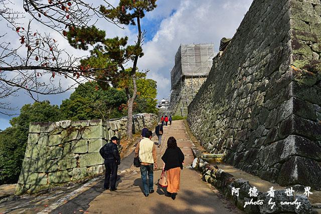 松山-大洲D810 035.JPG