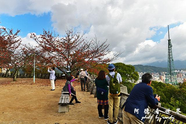 松山-大洲D810 050.JPG