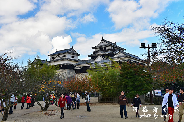 松山-大洲D810 072.JPG