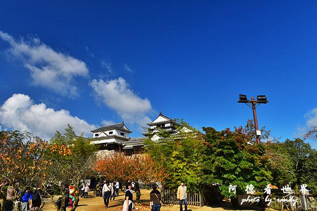 松山-大洲D810 088.JPG