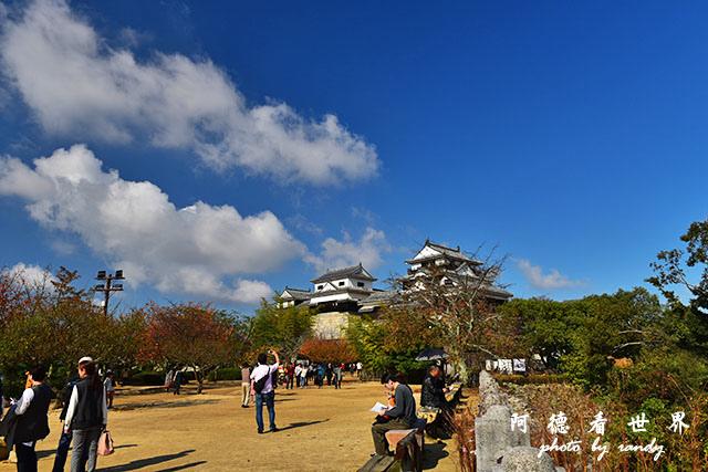 松山-大洲D810 092.JPG