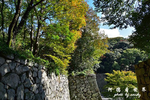 松山-大洲D810 108.JPG