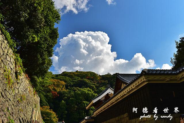 松山-大洲D810 110.JPG