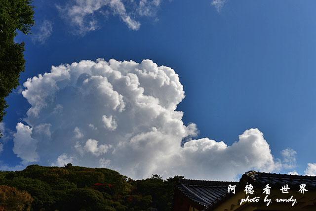 松山-大洲D810 111.JPG