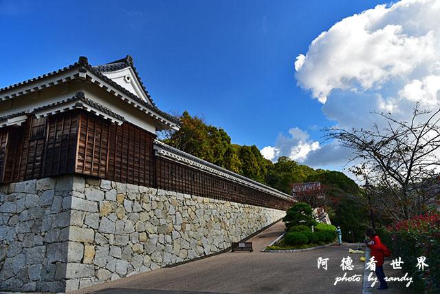 松山-大洲D810 113.JPG