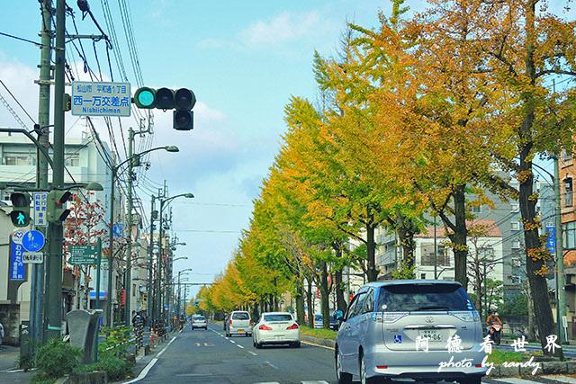 松山-大洲P7700 062.JPG